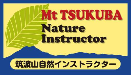 Inst_mark