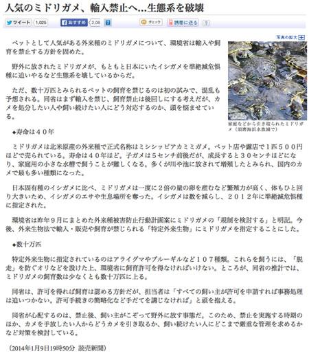 Midorigame_kiji
