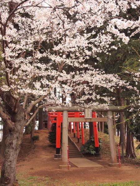 Kamiyainari160406_2