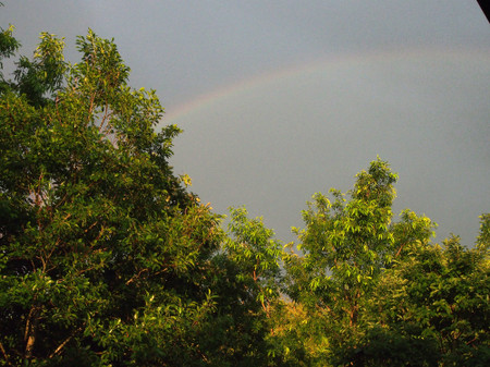 Rainbow160704